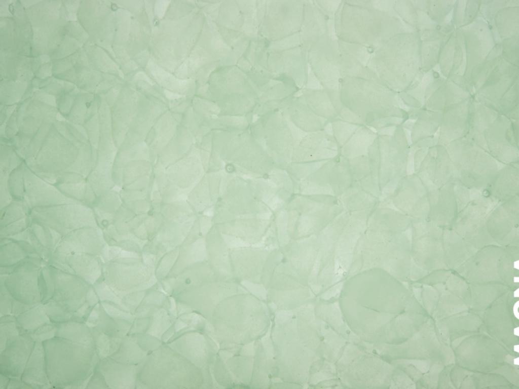 Glass Ceramic Jade Magna Magna Glaskeramic