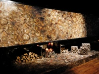 Brown Petrified Wood fire place