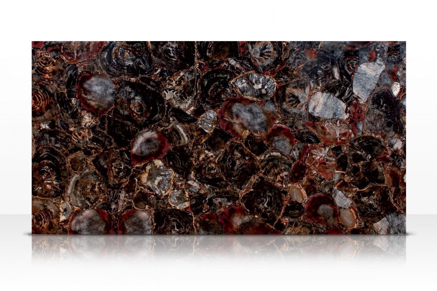 Semi-précieux Black Petrified Wood slab