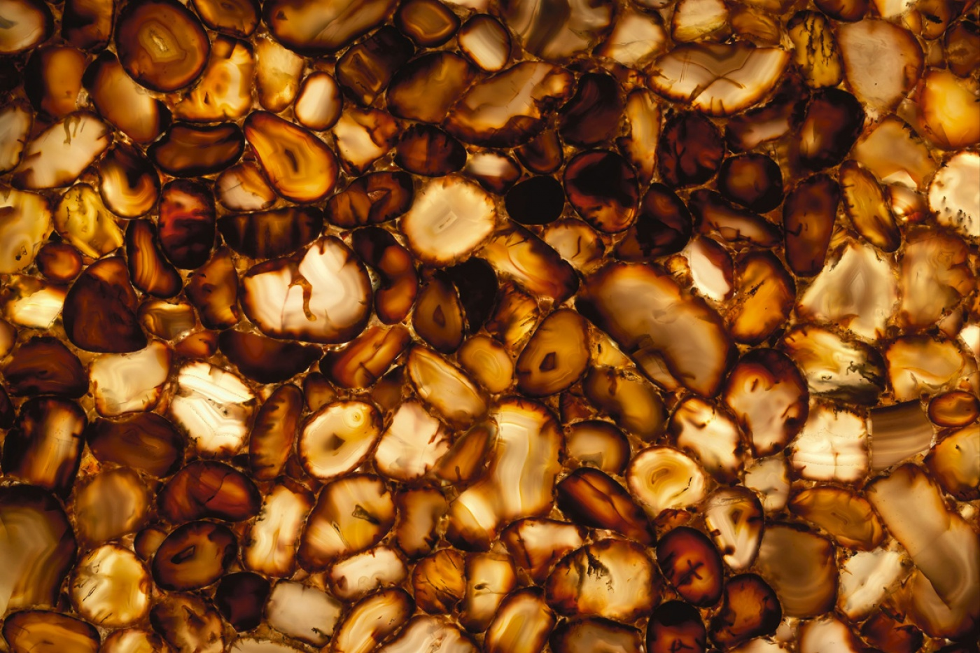 Marbre Carnelian brown backlit