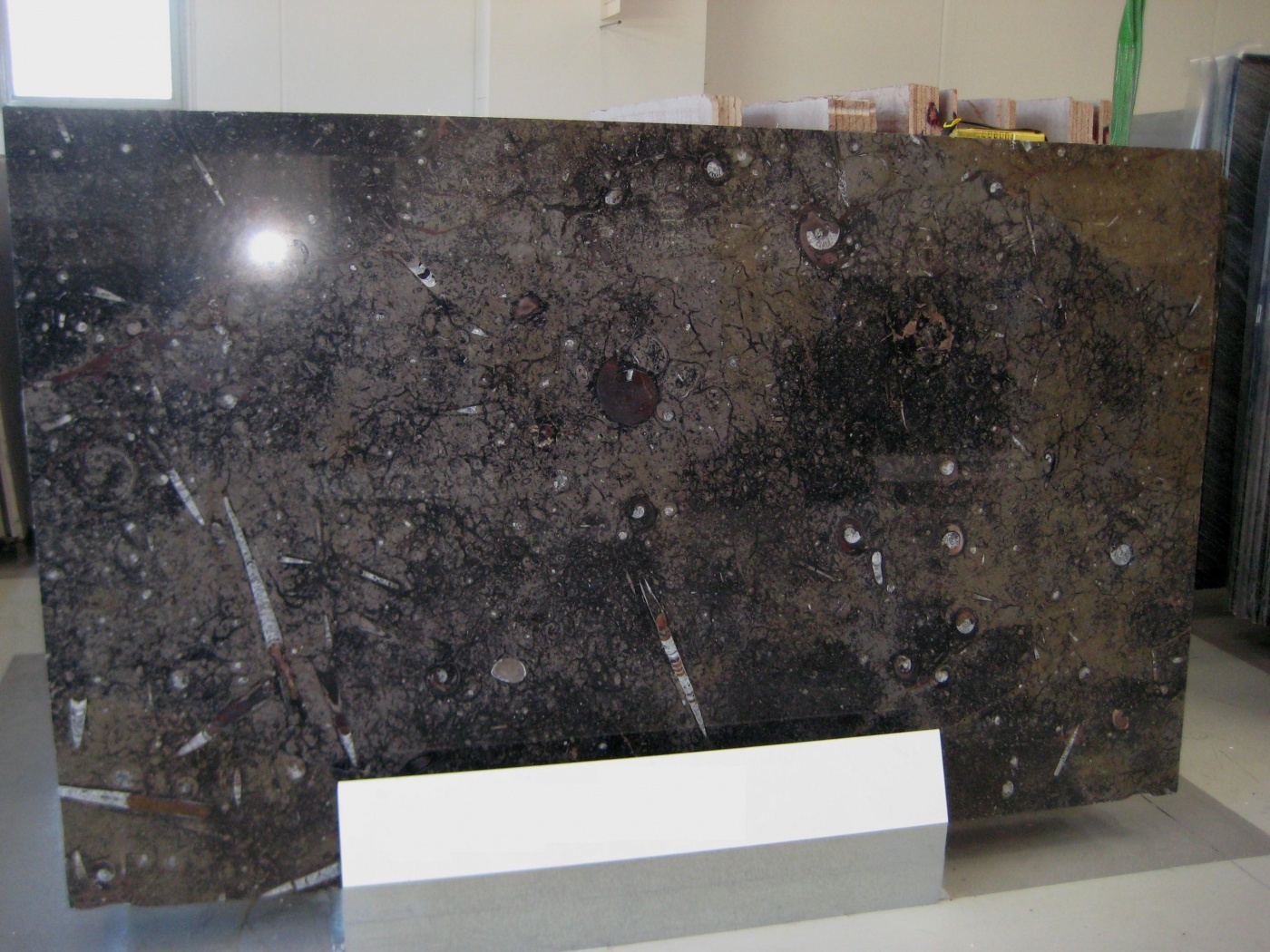 Onyx Brown Fossile