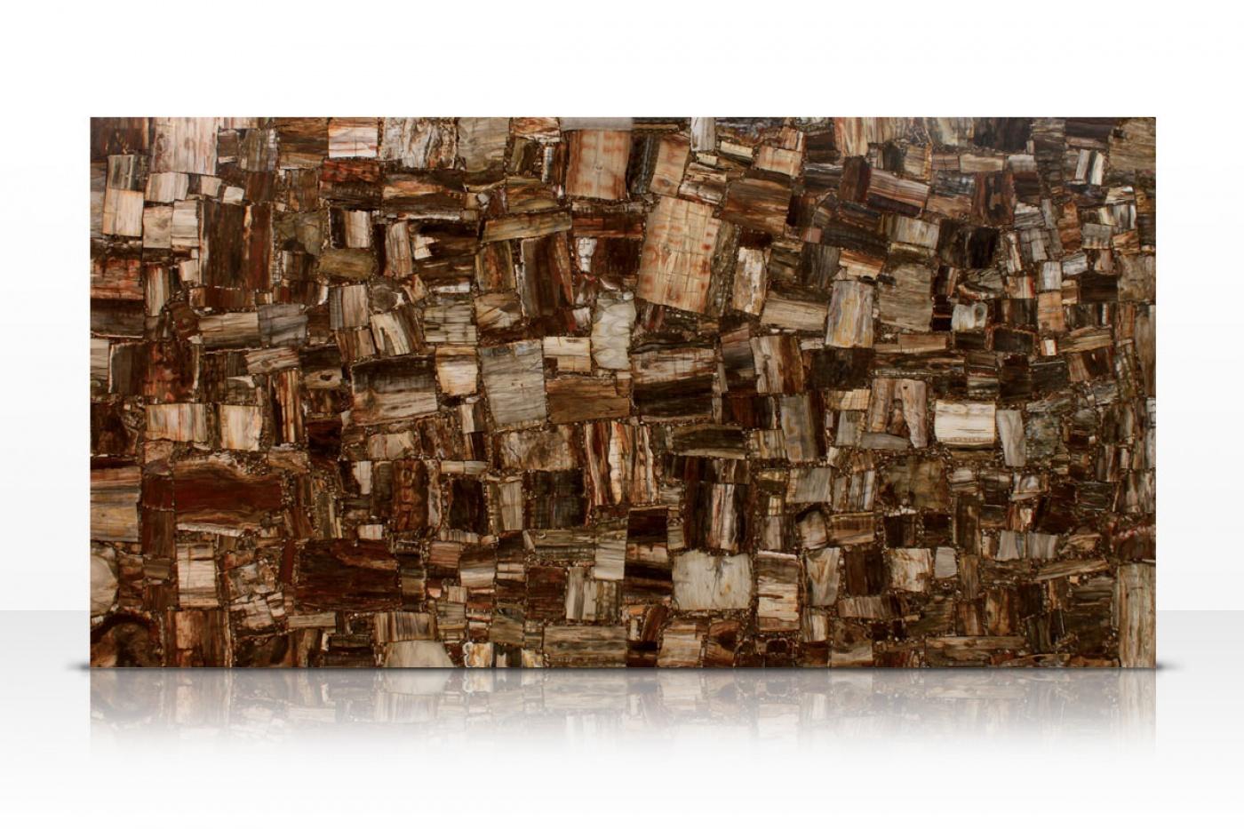 Marbre Retro Petrified Wood slab